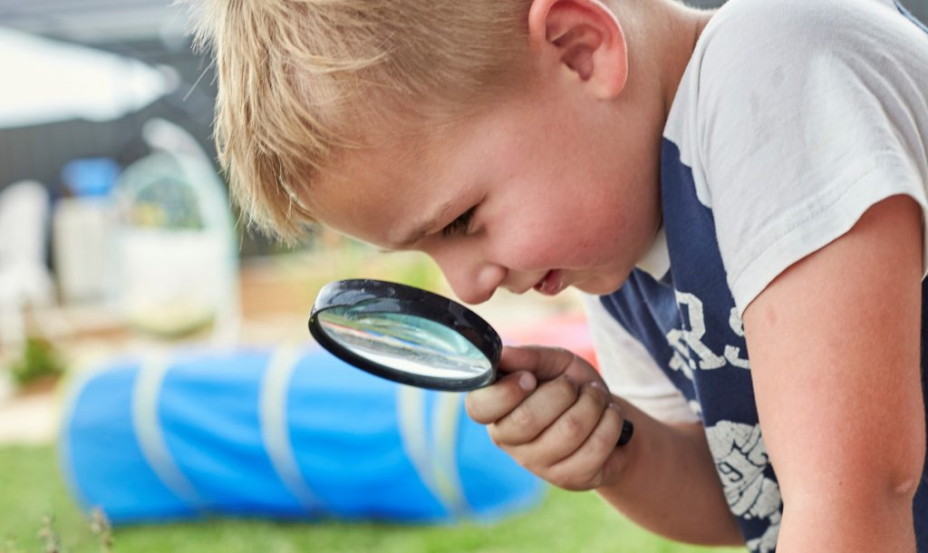 Young boy examines a plant with a magnifying glass